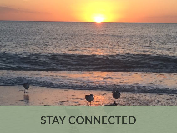 Stay Connected Naples Florida | Hyde Park at Pelican Bay Condo Association